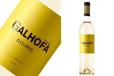 GALHOFA_1